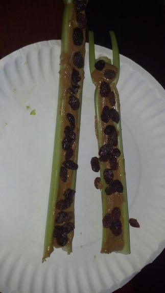 Ants on a log paleo snack