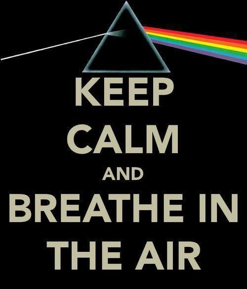 4a1bb43fe775938dcad129419df4d126--comfortably-numb-roger-waters.jpg